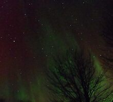 The northern lights 2 by agrusag