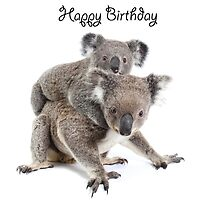A koala Happy Birthday 2L by Gerry Pearce