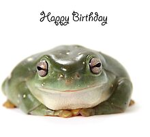 A Tree Frog Happy Birthday 1L by Gerry Pearce