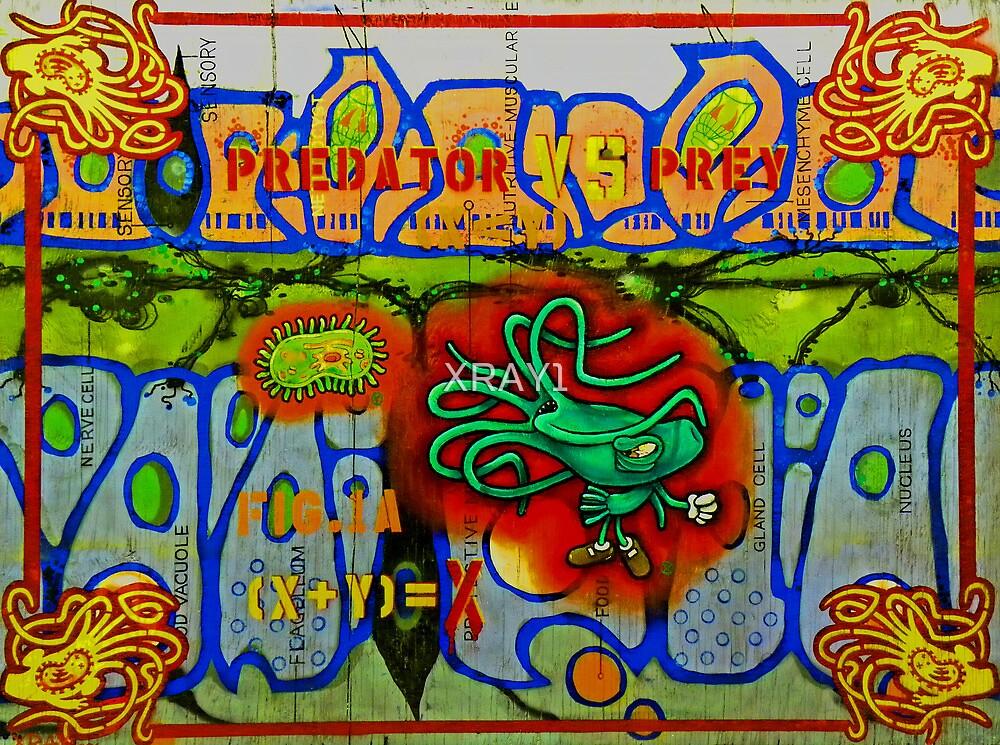 """""""Predator VS. Prey"""" by XRAY1"""