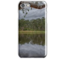 Dunns Swamp iPhone Case/Skin