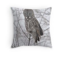 Northern Visitor Throw Pillow