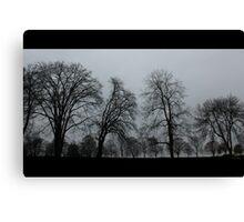 The Trees - Film Noir Canvas Print