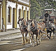 Arriving at the Goldfields by TonyCrehan