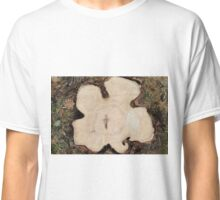 Top view of a cut tree Classic T-Shirt
