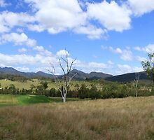 Mount Barney Panorama by Noel Elliot