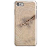 Top view of the annual rings of cut tree closeup iPhone Case/Skin
