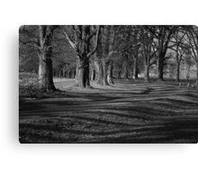 Shadows of Gostwyck Canvas Print