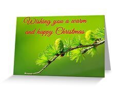 Wishing you a warm and happy Christmas Greeting Card
