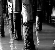 Pillars by Craig Jennings