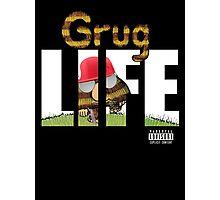 Grug Life Photographic Print