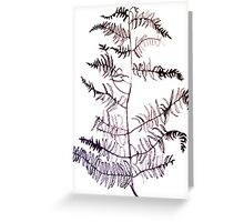 Bracken drawing Greeting Card
