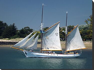 "The ketch ""Julie Burgess"" by Glenn Bumford"