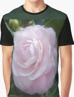 Pale & Pink Graphic T-Shirt