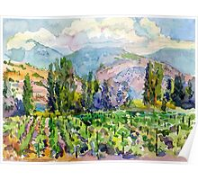 Landscape with vineyard Poster