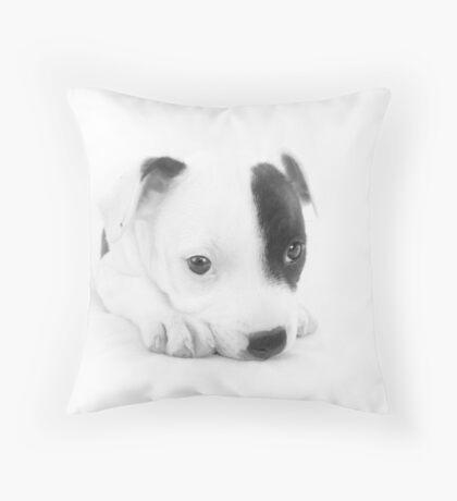Baby Molly Throw Pillow