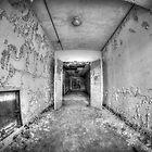 Seaside Sanatorium - Entry View by Timothy Borkowski