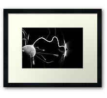 Plasma Ball Framed Print