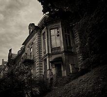 Haunted I by annapozarycka