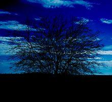 Stoney Blue by sinaprax