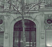 The Banks Of Paris by amylauroo