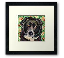 "Sweet Rescue Dog ""Zoe"" Framed Print"