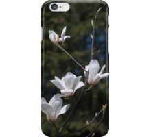 Magnolia branch iPhone case iPhone Case/Skin