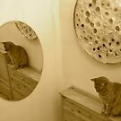 Cat mirror by impossiblesong