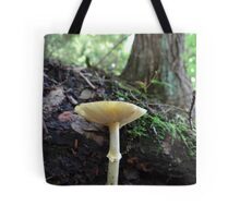 Cliff hanger~for Cheryl Tote Bag