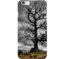 Tree at Park Brow iPhone Case/Skin