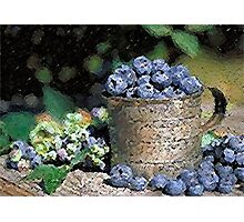 Blueberries Poster, Print & Card Photographic Print
