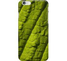 Sycamore Leaf iPhone Case/Skin