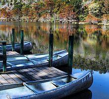 Boat Rentals by Carolyn  Fletcher