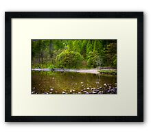 Tree reflections in the water at Lake Buttermere Framed Print