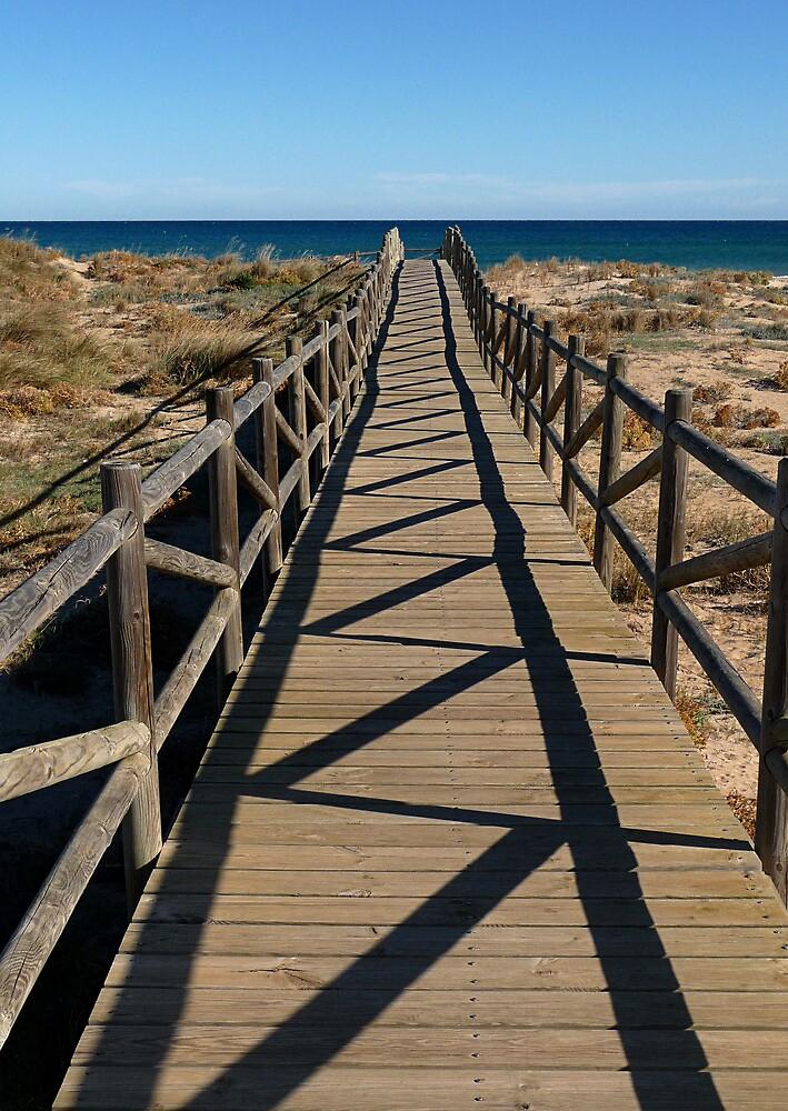 Beach Walkway by Kate Fortune