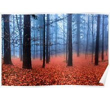 Fog on leaves Poster