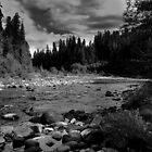 McKenzie River by Lee LaFontaine