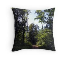 Road to the Hiking Trails at Ricketts Glen Throw Pillow
