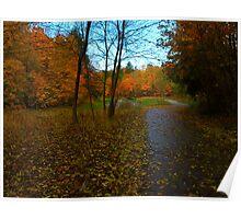 Autumn Complexion Poster