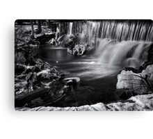 Black and White Falls Canvas Print