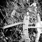 Overgrown by MsMelStevens