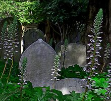 Mission Headstones by Brendon Perkins