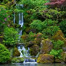 Garden Waterfall by Brendon Perkins