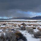 Wide Pyramid Lake Winter by SB  Sullivan