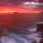 Torndirrup National Park by Ben Reynolds