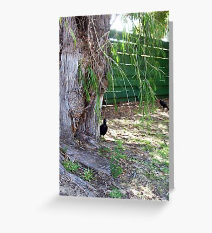 Magpie Two - 31 12 12 Greeting Card