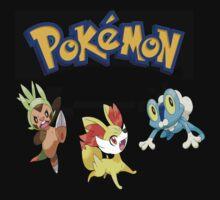 Pokemon Gen VI Starters by Andaimaru