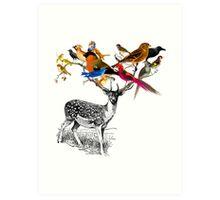 DEER BIRDY Art Print