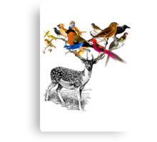 DEER BIRDY Canvas Print