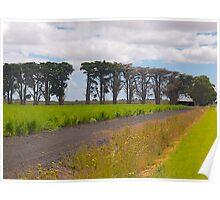 Windbreak, Asparagus Farm, Cardinia, Gippsland, Victoria. Poster